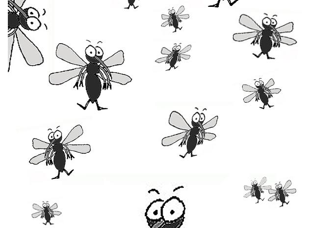 produit anti moustique