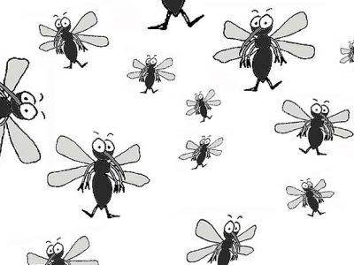 Piqûres de moustiques : 3 remèdes qui marchent !